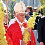 Jesus está presente em todos que sofrem, diz Papa no Domingo de Ramos